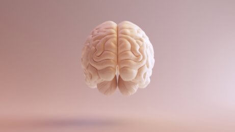 Cérebro flutuando