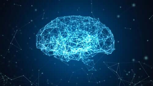 Ilustração digital do cérebro