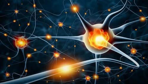 Atividade dos neurônios