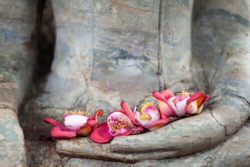 Os eixos do amor segundo o budismo