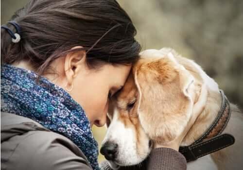 Mulher recebendo apoio emocional do seu cachorro