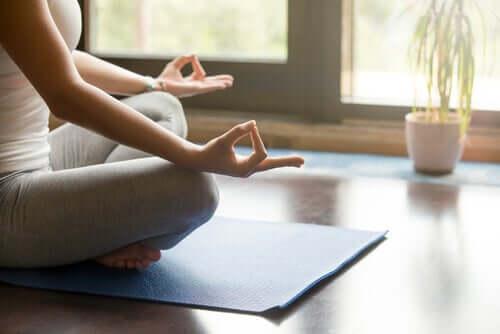 Alguns fundamentos da meditação