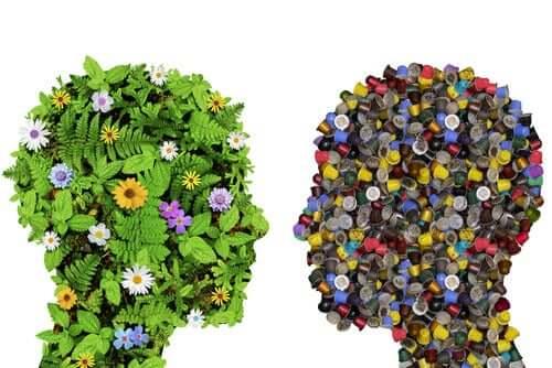 A influência do meio ambiente em nós