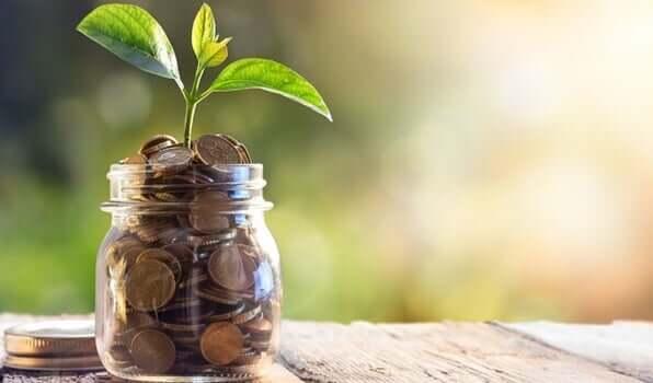 Fazer a vida financeira florescer