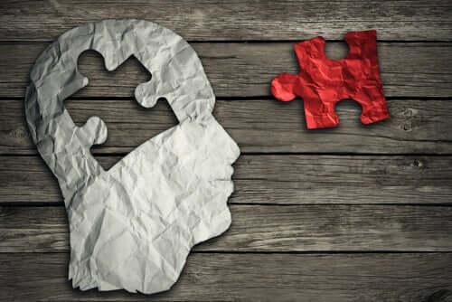 Quebra-cabeças do cérebro humano