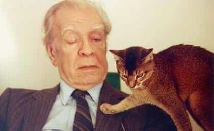 Jorge Luis Borges: a biografia de um erudito das letras