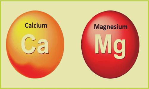 Cálcio e magnésio