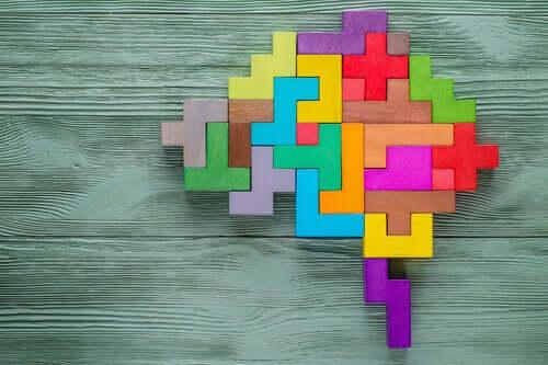 Peças formando cérebro