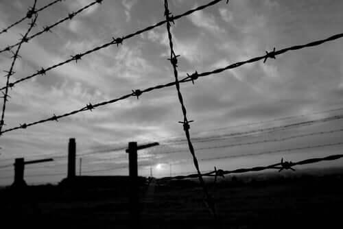 Arame farpado em um campo de concentração