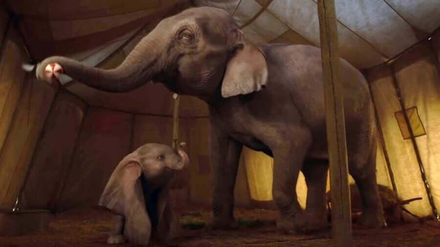 Cena do filme 'Dumbo'