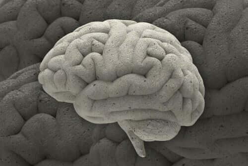 Três fascinantes casos da neurociência