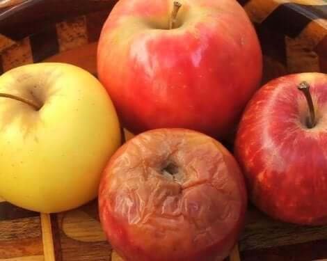 A teoria da maçã podre