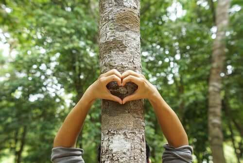 Proteger a natureza e o meio ambiente