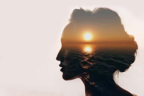 Contorno de mulher com imagem do sol se pondo no mar