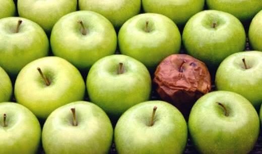 A teoria da maçã podre: o efeito do mau colega de trabalho