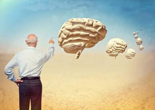 A neuropsicologia do envelhecimento