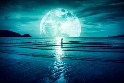 Lua cheia em praia