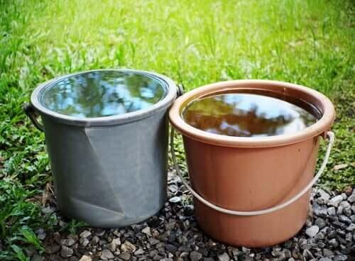 Dois baldes cheios de água