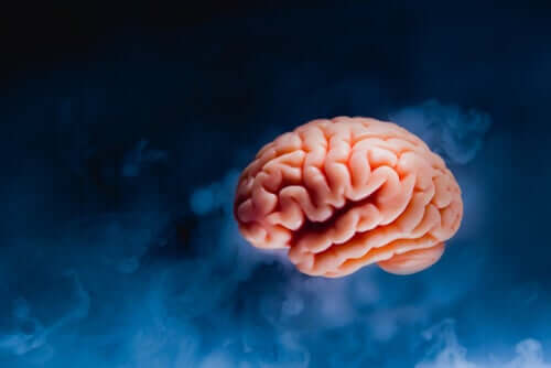 Cérebro sobre fundo azul