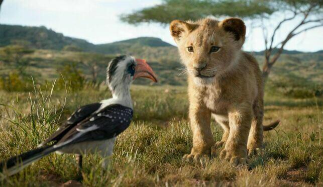 Simba e Zazu