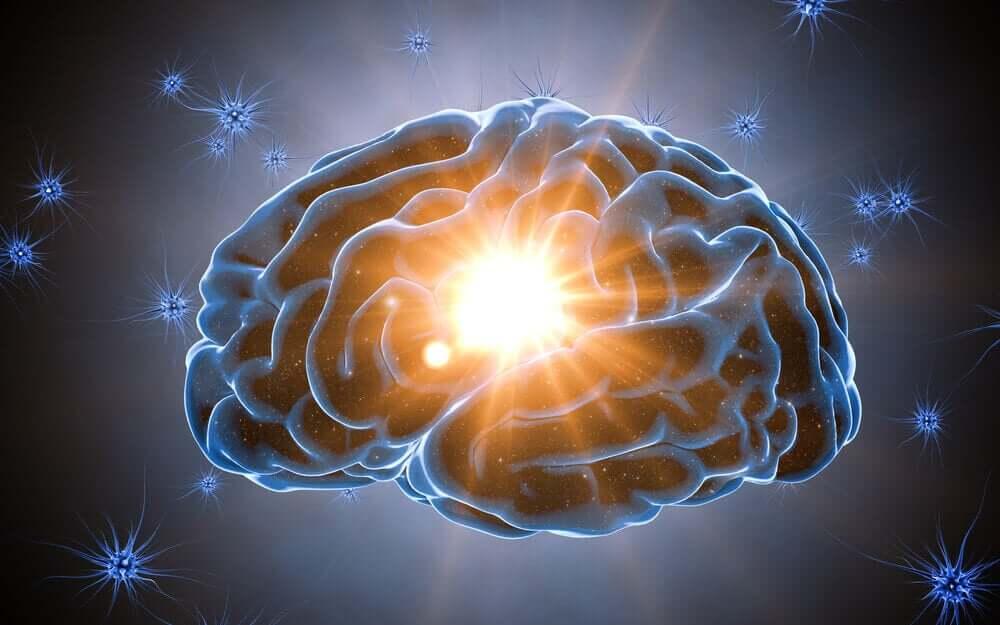 O cérebro adora surpresas