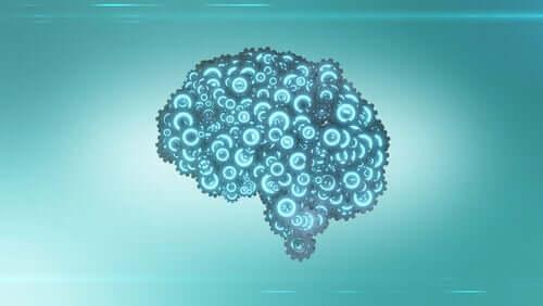 Os mecanismos do cérebro