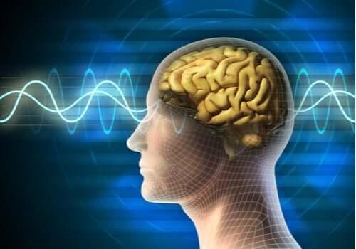 Usos da terapia eletroconvulsiva