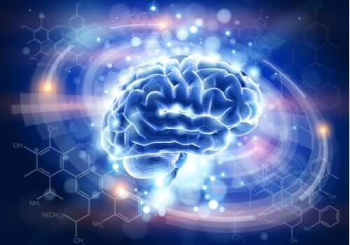 Cérebro iluminado em destaque