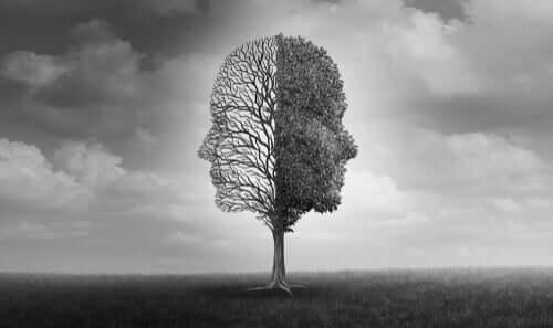 Árvore com dois rostos