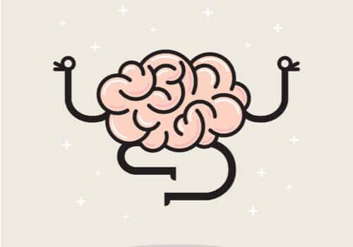 Por que o cérebro não sente dor?