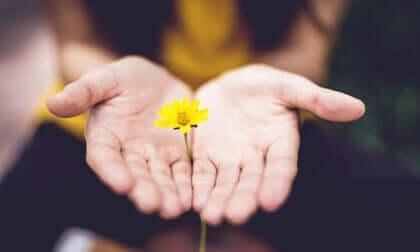 5 frases para iniciar novas fases com esperança