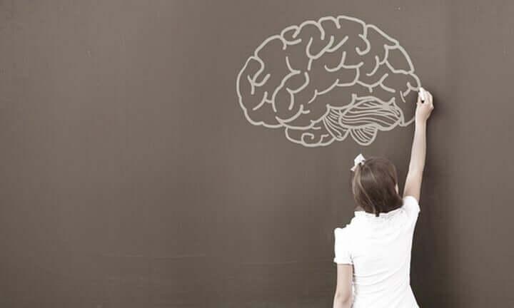 A neuropsicologia do desenvolvimento infantil