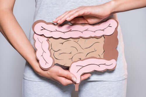 A digestão mental: a chave para os problemas intestinais