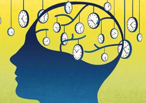 A percepção do tempo no cérebro