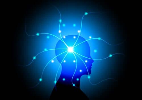 O impacto no ambiente no cérebro