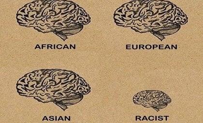 Como o cérebro de uma pessoa racista funciona?