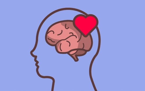 Cérebro emocional