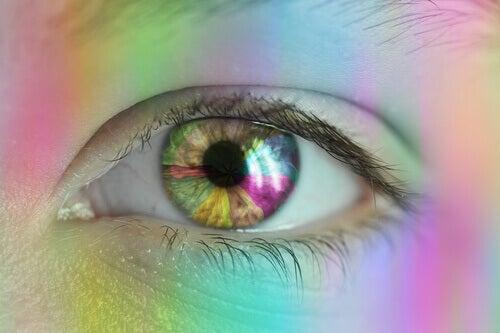 Visão de cor: como vemos as cores?