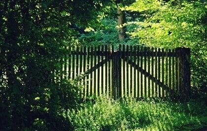 Portão fechado no campo