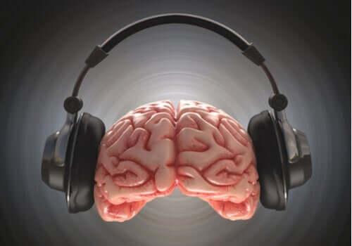 Escuta dicótica: definição e características