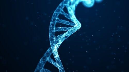 A mudança dos genes através da meditação
