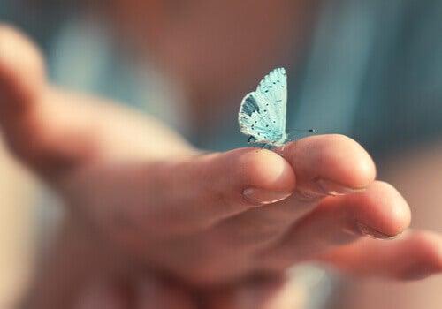 As pequenas coisas da vida