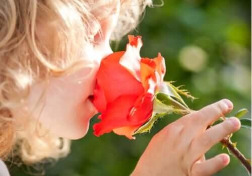 Menina cheirando rosa