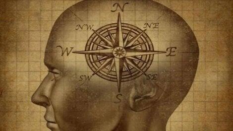 A bússola do cérebro moral