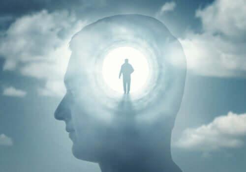 A psicopatologia da consciência