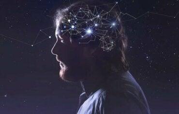 """Rede neuronal padrão: o """"piloto automático"""" do cérebro"""