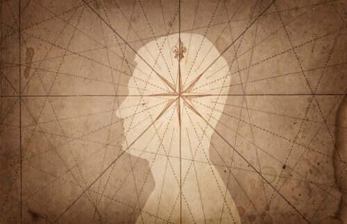 A neurobiologia da sensibilidade moral