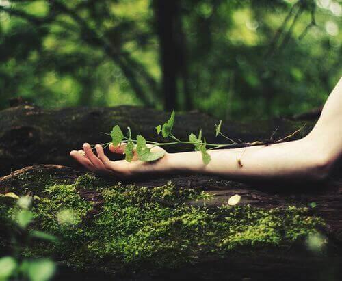 Quando acredito em mim mesmo, desperto as minhas forças e não deixo de crescer