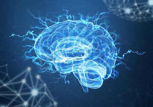 Neuroplasticidade e estresse pós-traumático: o cérebro pode superar o trauma?