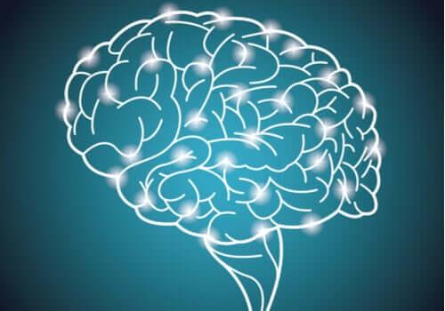 O maior experimento do mundo sobre a inteligência